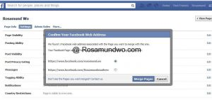 How to merge facebook business page04